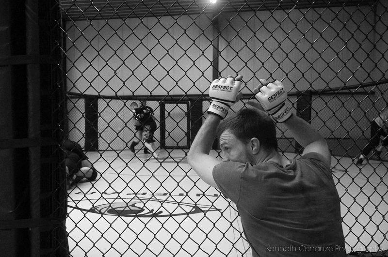 Boxer during a trainig